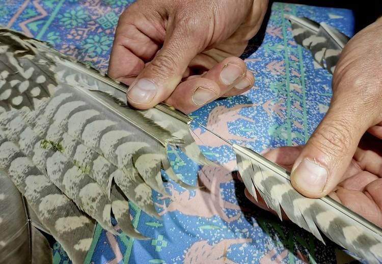 Перья насадили с помощью игл от шприца и клея. Фото: Иркутская зоогалерея.