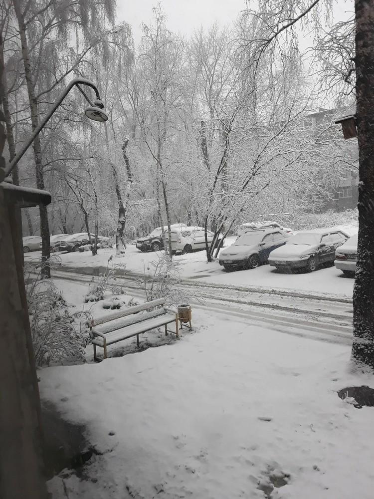 О том, что скоро пойдет снег, предупреждали синоптики Фото: СОЦСЕТИ/Ирина Клименко