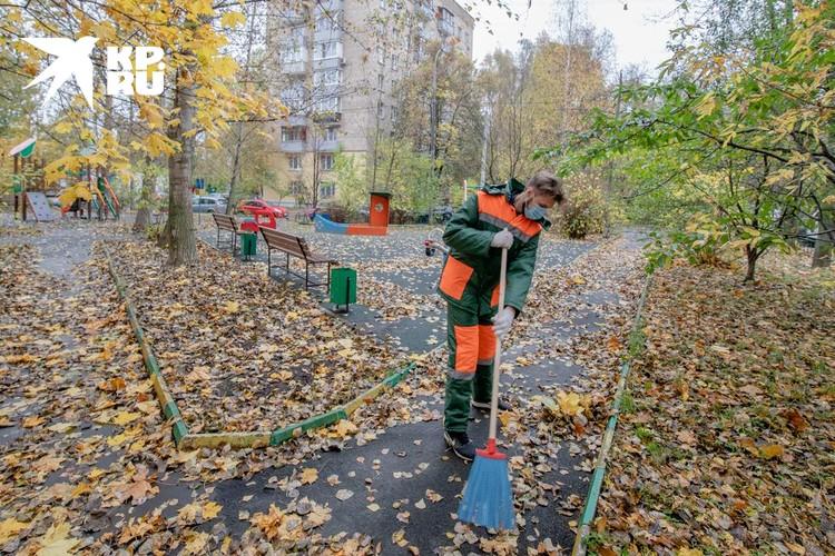 После ночного урагана вся площадка завалена листвой