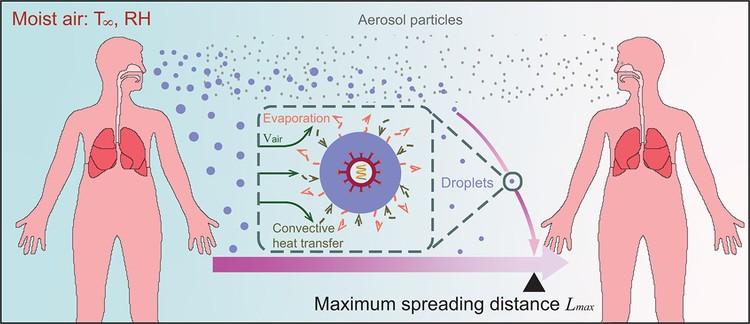 Ученые нарисовали схему двух путей распространения коронавируса - воздушно-капельного (на графике обозначен синими крупными точками) и аэрозольного (мелкие красные точки)