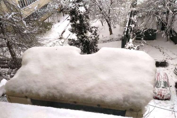 За ночь выпало 20 сантиметров снега.