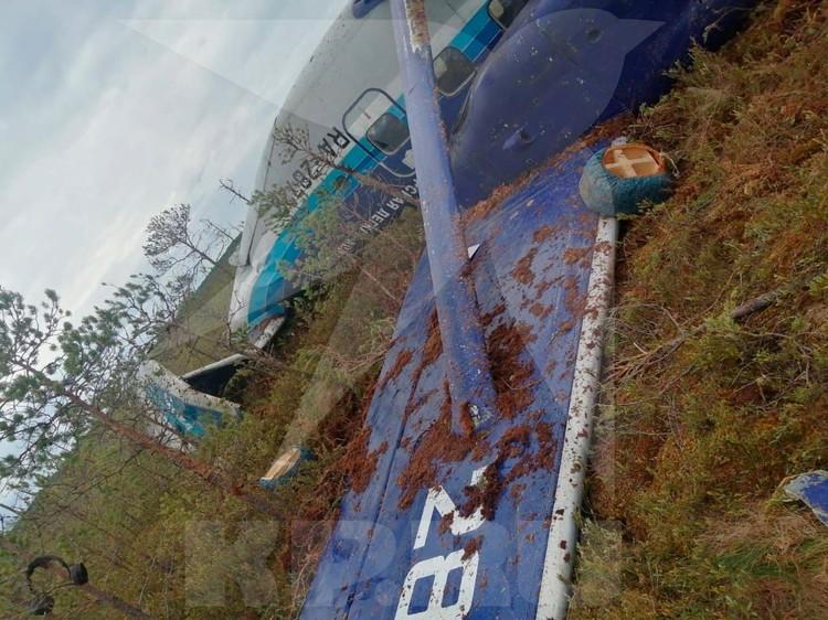 Самолет упал в болота. Фото: Сибирский авиационный поисково-спасательный центр