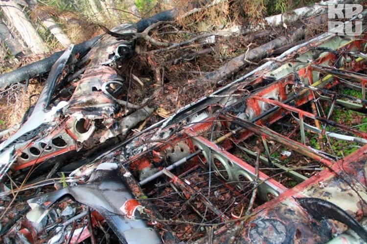 Корпус самолета лежал в болоте в восьми километрах от серовского аэродрома, с которого он взлетел 11 июня прошлого года