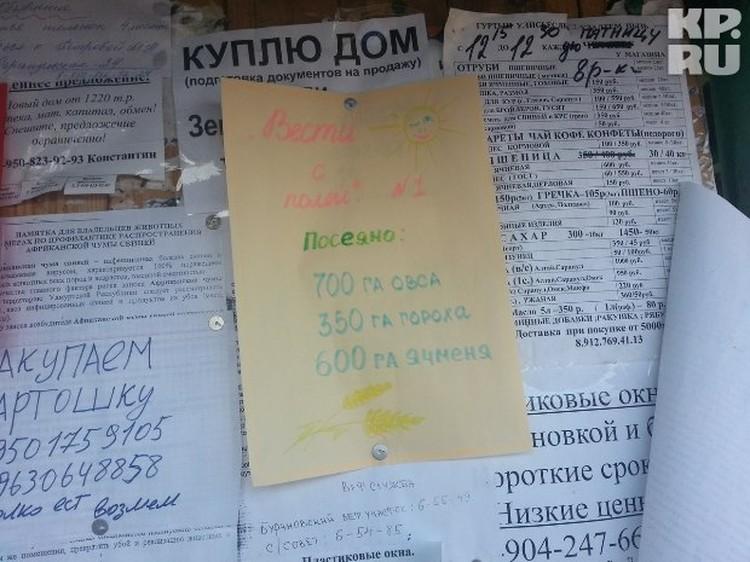 На доске объявлений у центрального магазина висит доклад, написанный цветными карандашами.