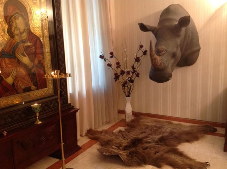 Голова грозного носорога в патриаршей резиденции - подарок премьера Иванишвили.