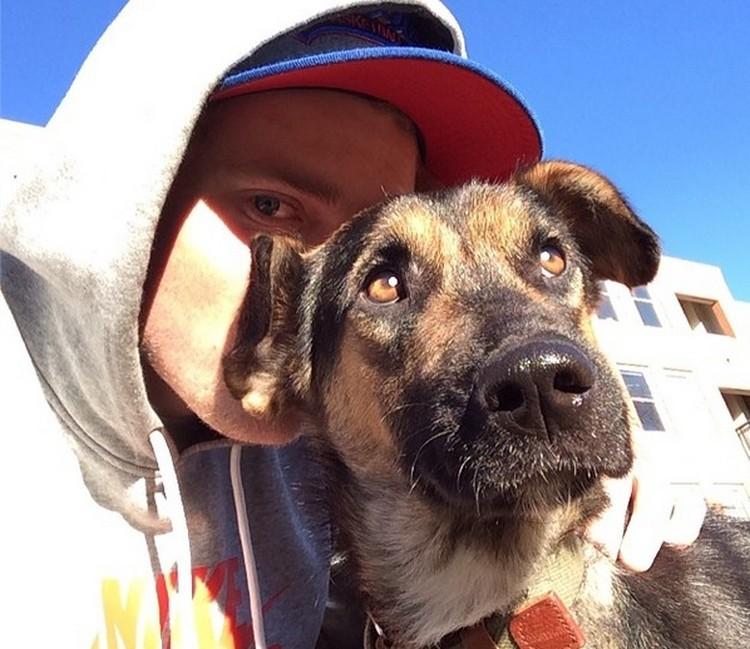 Собака по кличке Мама. Ее восхищаются все подписчики странички животин в Инстаграме