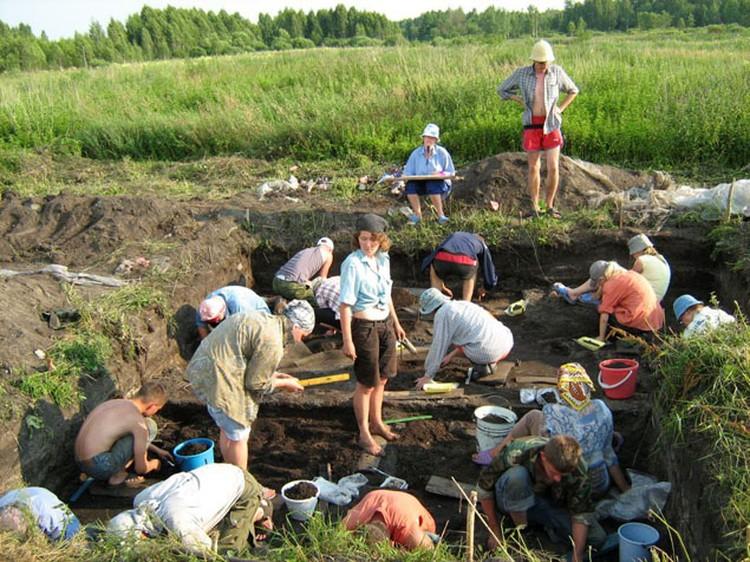 Институт истории НАН Беларуси каждый год организовывает археологическую экспедицию. Фото: asaviec.by