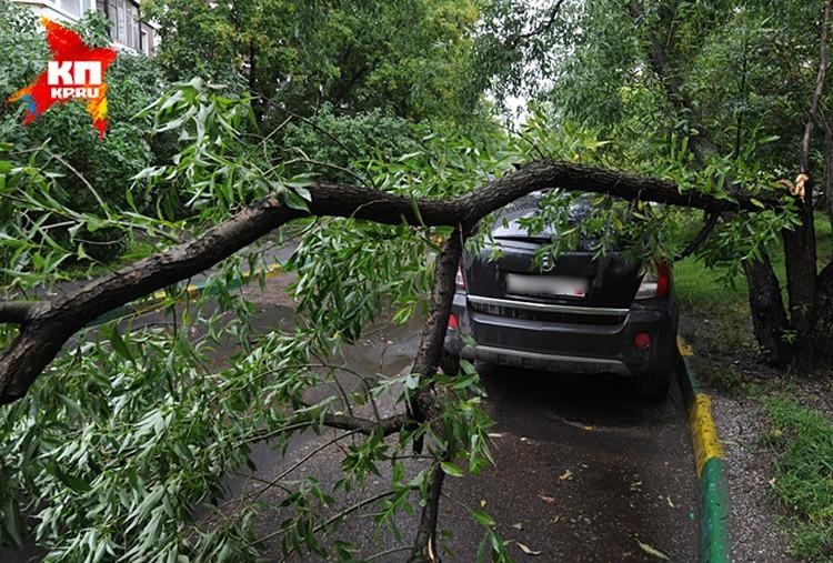 МЧС объявило в столице штормовое предупреждение