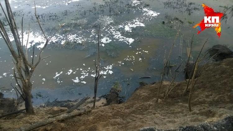 Следы нефтепродуктов видны и у самого берега