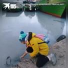 Балаклавскую бухту заполонили медузы