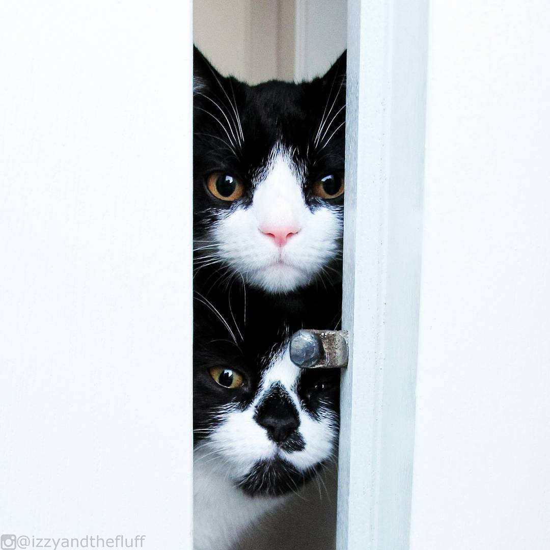 Are you leaving, again?