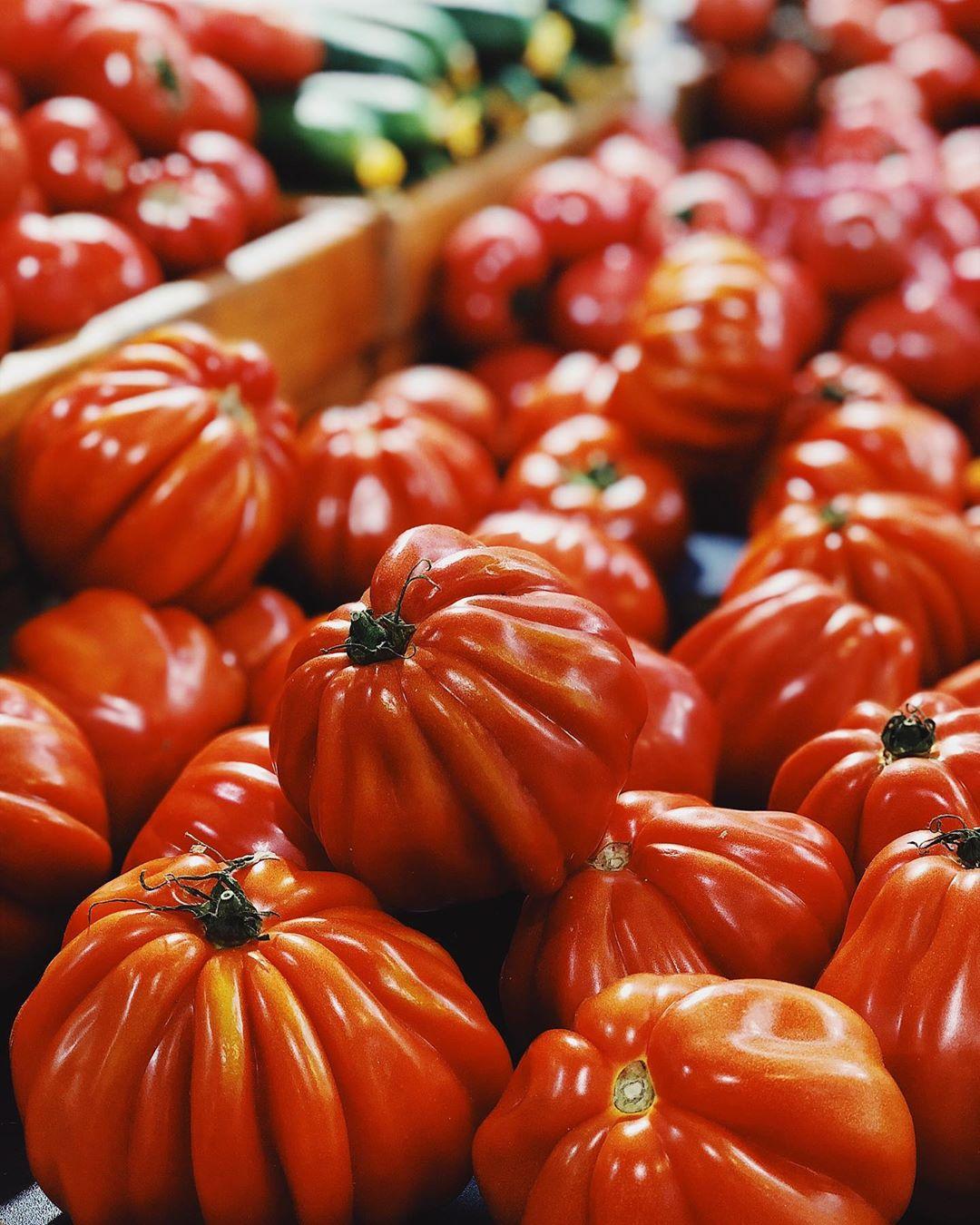 Татьяна Брухунова показала сочные помидоры